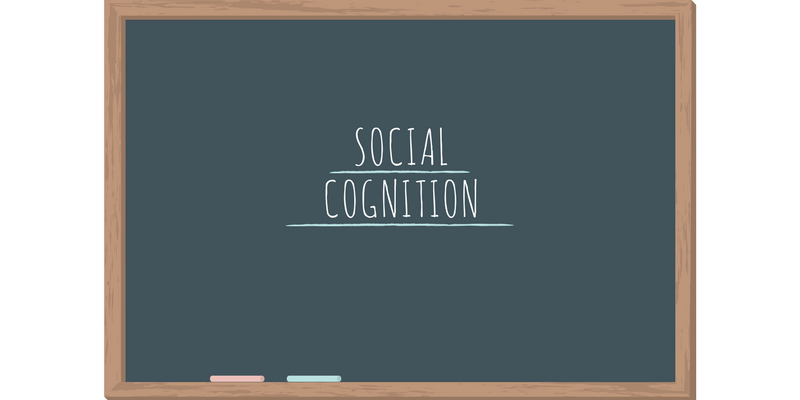 Social Cognition - Blog Post by Michael Purcell, Head of School at KC High IGCSE Cambridge International School in Chennai