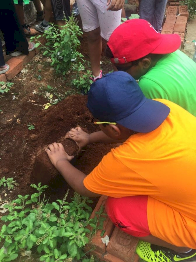 The Art Of Gardening With Children From Grade 3