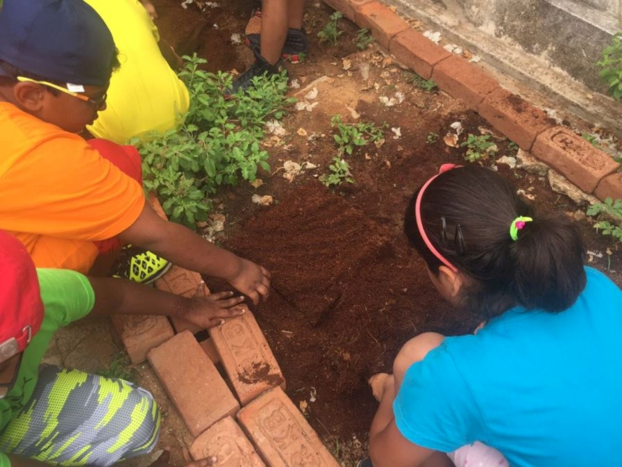 The Art Of Gardening With Children From Grade 3. Share It